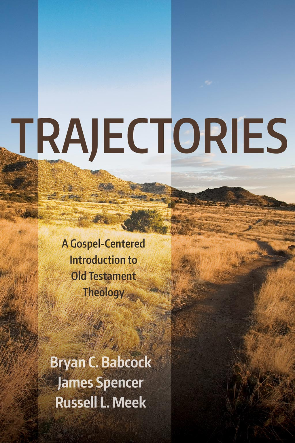 Book cover of Trajectories: A Gospel-Centered Introduction to Old Testament Theology